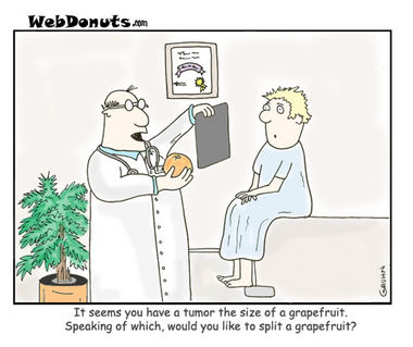 The Grapefruit Doctor
