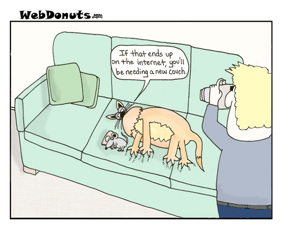 WebDonuts Comics - Internet Photos