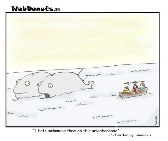 Whales – First Caption Contest Winner